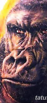 фото тату горилла от 27.08.2017 №010 – Gorilla tattoo – tatufoto.com