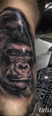 фото тату горилла от 27.08.2017 №016 – Gorilla tattoo – tatufoto.com