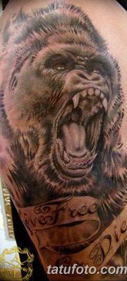 фото тату горилла от 27.08.2017 №020 – Gorilla tattoo – tatufoto.com