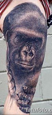фото тату горилла от 27.08.2017 №021 – Gorilla tattoo – tatufoto.com