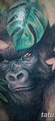 фото тату горилла от 27.08.2017 №022 – Gorilla tattoo – tatufoto.com