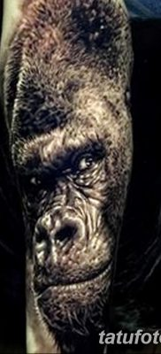фото тату горилла от 27.08.2017 №027 – Gorilla tattoo – tatufoto.com