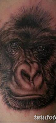 фото тату горилла от 27.08.2017 №030 – Gorilla tattoo – tatufoto.com