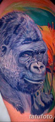 фото тату горилла от 27.08.2017 №031 – Gorilla tattoo – tatufoto.com