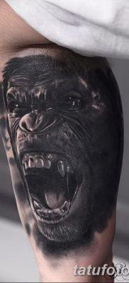 фото тату горилла от 27.08.2017 №032 – Gorilla tattoo – tatufoto.com