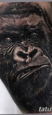 фото тату горилла от 27.08.2017 №036 – Gorilla tattoo – tatufoto.com