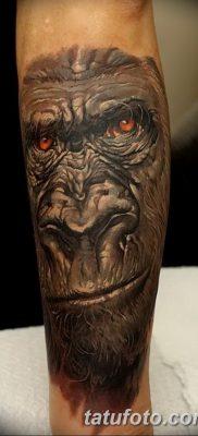 фото тату горилла от 27.08.2017 №039 – Gorilla tattoo – tatufoto.com