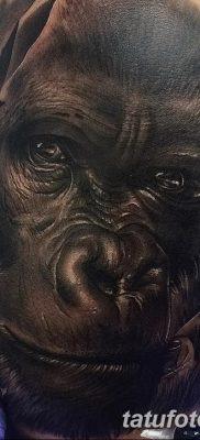 фото тату горилла от 27.08.2017 №044 – Gorilla tattoo – tatufoto.com