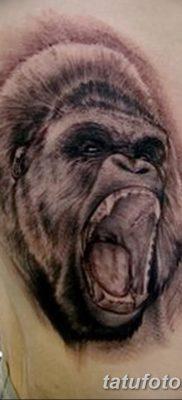 фото тату горилла от 27.08.2017 №045 – Gorilla tattoo – tatufoto.com