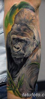 фото тату горилла от 27.08.2017 №049 – Gorilla tattoo – tatufoto.com