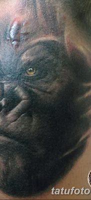 фото тату горилла от 27.08.2017 №057 – Gorilla tattoo – tatufoto.com