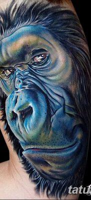 фото тату горилла от 27.08.2017 №058 – Gorilla tattoo – tatufoto.com