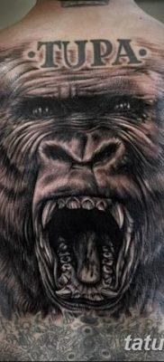 фото тату горилла от 27.08.2017 №060 – Gorilla tattoo – tatufoto.com