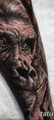 фото тату горилла от 27.08.2017 №069 – Gorilla tattoo – tatufoto.com