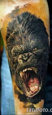 фото тату горилла от 27.08.2017 №073 – Gorilla tattoo – tatufoto.com