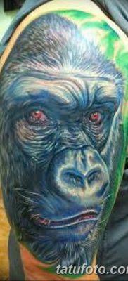 фото тату горилла от 27.08.2017 №112 – Gorilla tattoo – tatufoto.com
