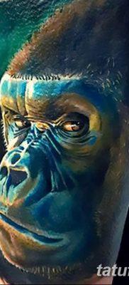 фото тату горилла от 27.08.2017 №113 – Gorilla tattoo – tatufoto.com