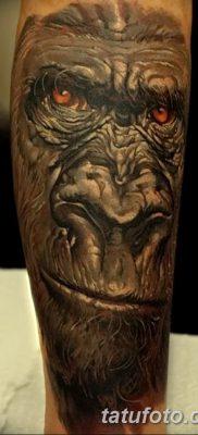 фото тату горилла от 27.08.2017 №115 – Gorilla tattoo – tatufoto.com