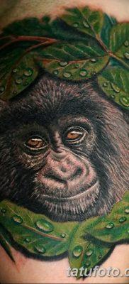 фото тату горилла от 27.08.2017 №119 – Gorilla tattoo – tatufoto.com