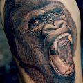 фото тату горилла от 27.08.2017 №121 - Gorilla tattoo - tatufoto.com