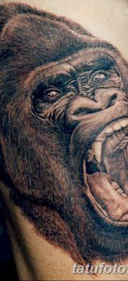 фото тату горилла от 27.08.2017 №121 – Gorilla tattoo – tatufoto.com