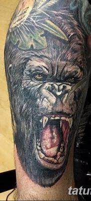 фото тату горилла от 27.08.2017 №122 – Gorilla tattoo – tatufoto.com