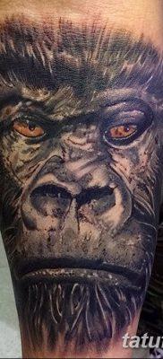 фото тату горилла от 27.08.2017 №123 – Gorilla tattoo – tatufoto.com