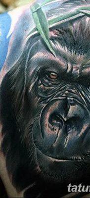 фото тату горилла от 27.08.2017 №124 – Gorilla tattoo – tatufoto.com
