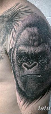 фото тату горилла от 27.08.2017 №127 – Gorilla tattoo – tatufoto.com