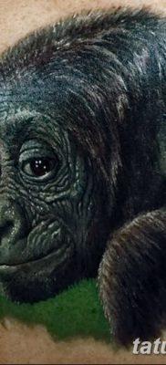 фото тату горилла от 27.08.2017 №128 – Gorilla tattoo – tatufoto.com