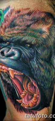 фото тату горилла от 27.08.2017 №136 – Gorilla tattoo – tatufoto.com