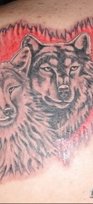 фото тату два волка от 19.08.2017 №038 – Tattoo two wolves_tatufoto.com