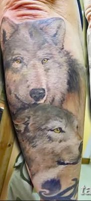 фото тату два волка от 19.08.2017 №046 – Tattoo two wolves_tatufoto.com