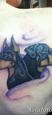 фото тату доберман от 18.08.2017 №008 – Doberman tattoo_tatufoto.com
