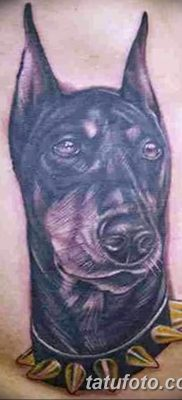 фото тату доберман от 18.08.2017 №032 – Doberman tattoo_tatufoto.com