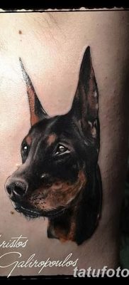 фото тату доберман от 18.08.2017 №038 – Doberman tattoo_tatufoto.com