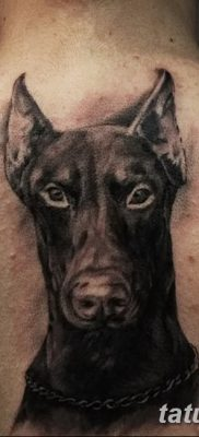 фото тату доберман от 18.08.2017 №093 – Doberman tattoo_tatufoto.com