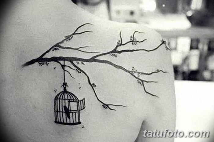 Caged bird tattoo on arm