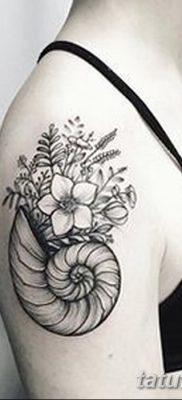 фото тату раковина от 19.08.2017 №010 – Tattoo shell_tatufoto.com