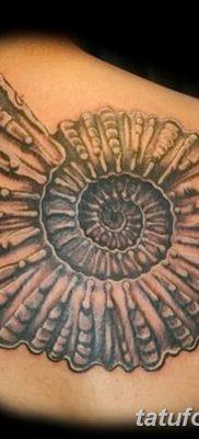 фото тату раковина от 19.08.2017 №024 – Tattoo shell_tatufoto.com