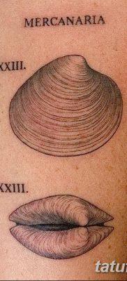фото тату раковина от 19.08.2017 №025 – Tattoo shell_tatufoto.com