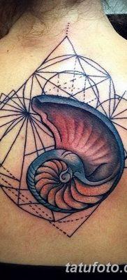 фото тату раковина от 19.08.2017 №033 – Tattoo shell_tatufoto.com