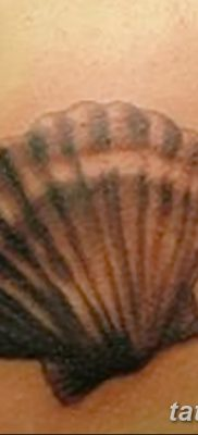 фото тату раковина от 19.08.2017 №041 – Tattoo shell_tatufoto.com