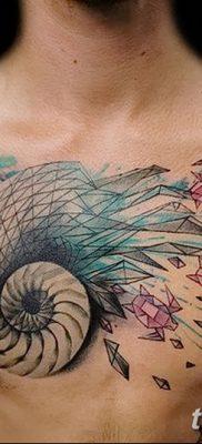 фото тату раковина от 19.08.2017 №147 – Tattoo shell_tatufoto.com