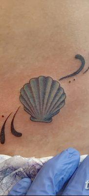 фото тату раковина от 19.08.2017 №150 – Tattoo shell_tatufoto.com