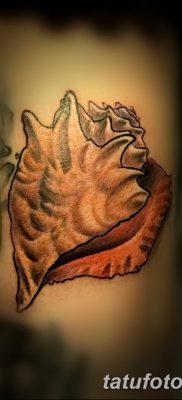 фото тату раковина от 19.08.2017 №156 – Tattoo shell_tatufoto.com