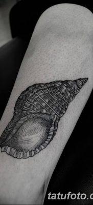фото тату раковина от 19.08.2017 №163 – Tattoo shell_tatufoto.com