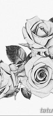 фото тату три розы от 21.08.2017 №003 – Three rose tattoos – tatufoto.com