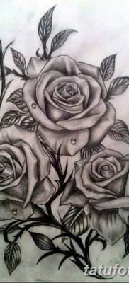 фото тату три розы от 21.08.2017 №066 – Three rose tattoos – tatufoto.com