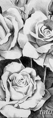 фото тату три розы от 21.08.2017 №107 – Three rose tattoos – tatufoto.com
